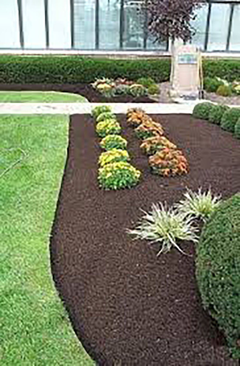 Walnut Dyed Cypress Mulch