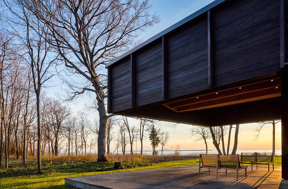 Rendering modern home, dark wood paneling 3